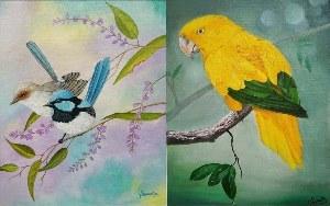 Birds Supreetha